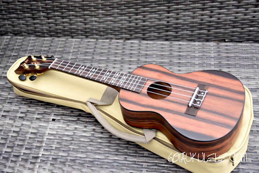 Flight DUC460 AMARA Concert Ukulele - Review